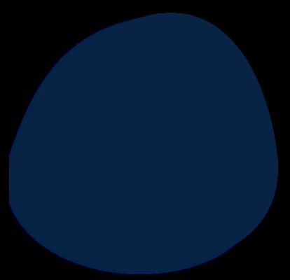 Landing Page (circle 1)